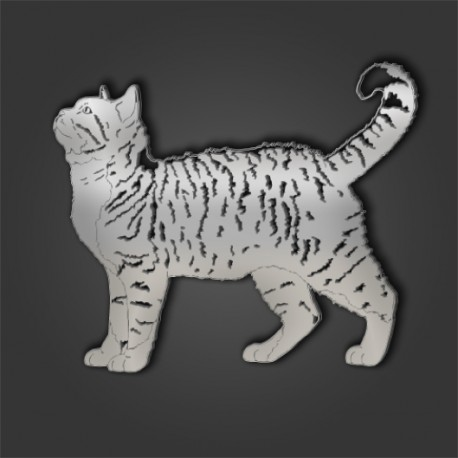 AMERICAN WIREHAIR STYLE 1 - Pet Mirrors