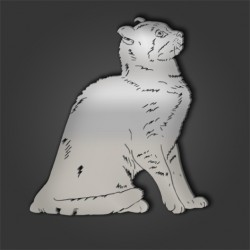 AMERICAN CURL STYLE 1