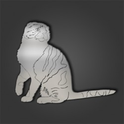 SCOTTISH FOLD STYLE 1