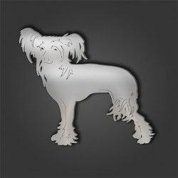 Chinese Crested Style 3