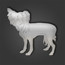 Chinese Crested Style 5
