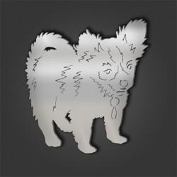 Chihuahua Style 8