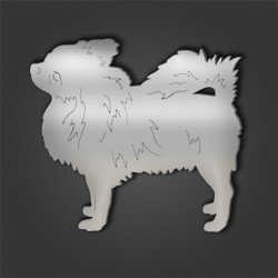 Chihuahua Style 10