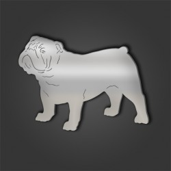 Bull Dog Style 4